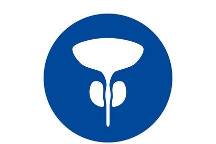 Icon Prostatakrebs
